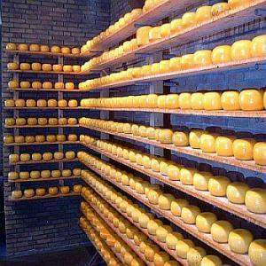 mb-2015-03-cheese