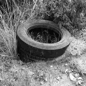 mb-2015-06-tire
